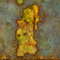 WoW Classic Kalimdor Icon