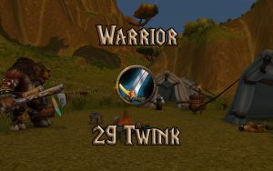 Wow Classic Level 29 Twink Warrior Guide