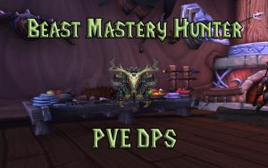 Wow Classic Pve Beast Mastery Hunter Guide