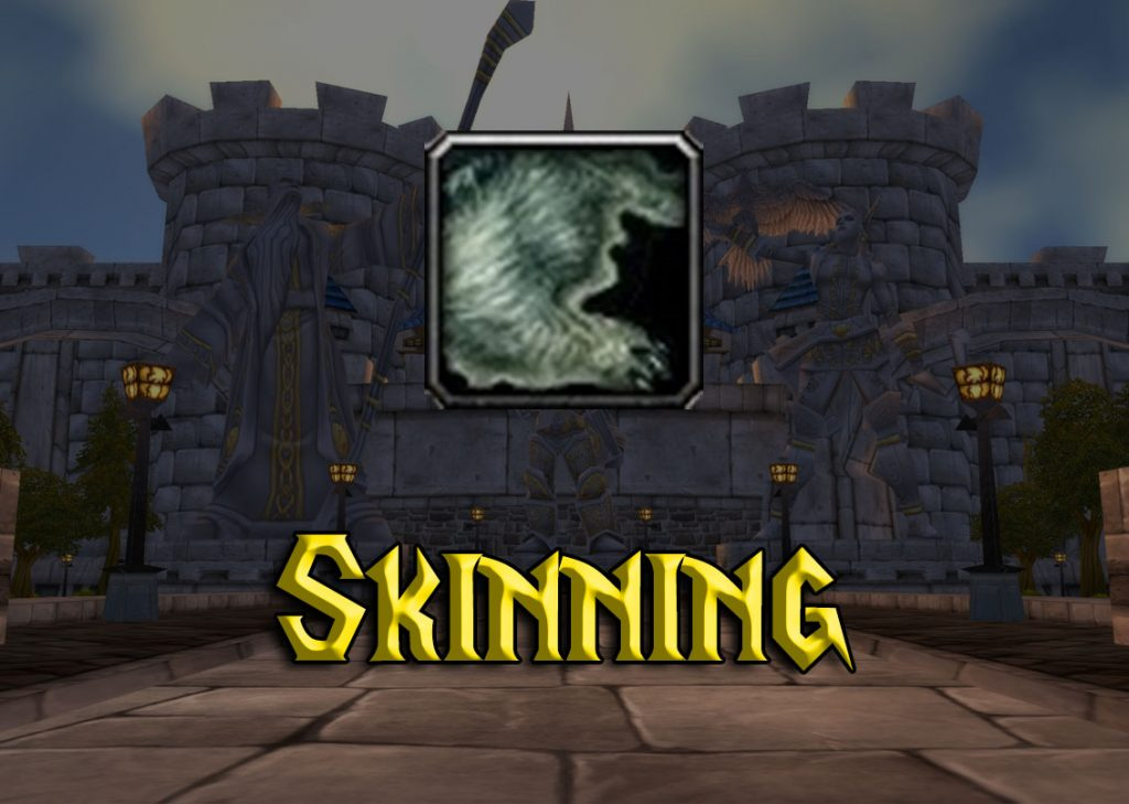 WoW Classic Skinning Guide 1-300