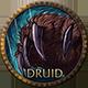 wow classic druid icon