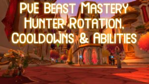 PvE Hunter TBC rotation, cooldowns, abilities