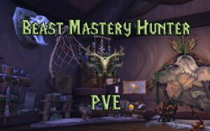 PVE Beast Mastery Hunter DPS Guide WotLK 3.3.5a