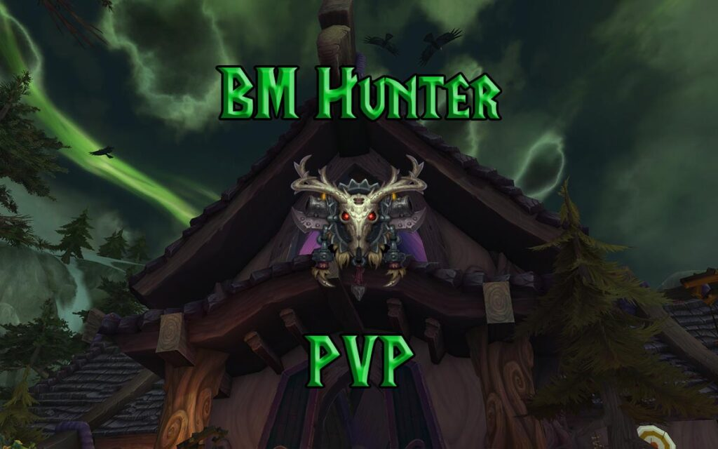 PVP Beast Mastery Hunter Guide WotLK 3.3.5a