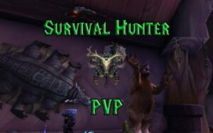 PVP Survival Hunter Guide WotLK 3.3.5a